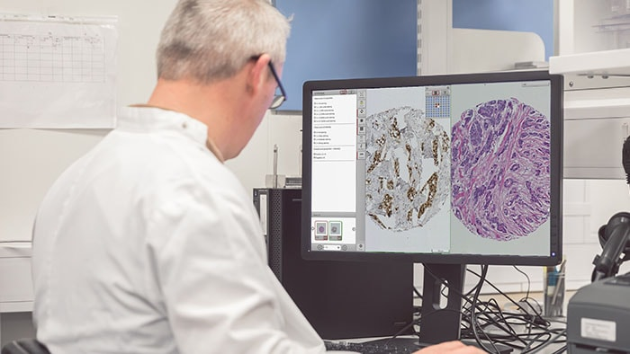 Download image (.jpg) Managing Pathology Data in an AI World
